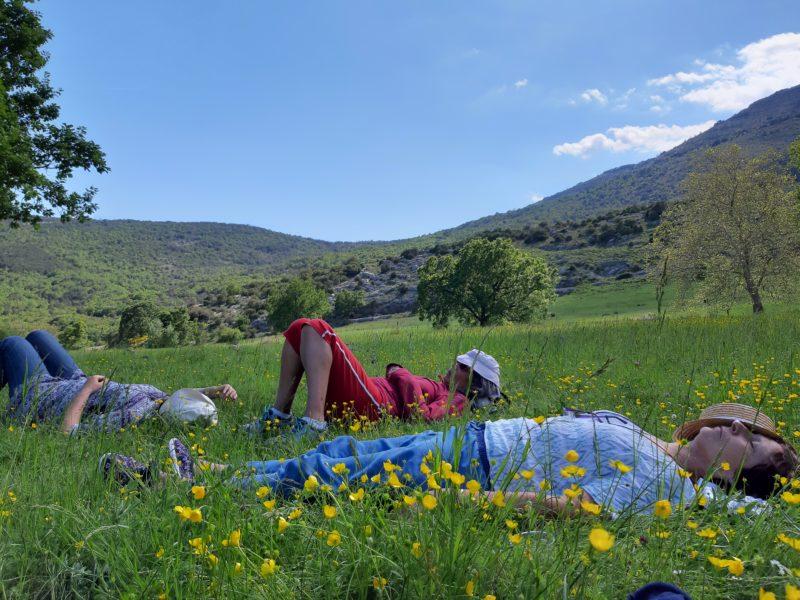Ecothérapie et Yoga nidra en pleine nature